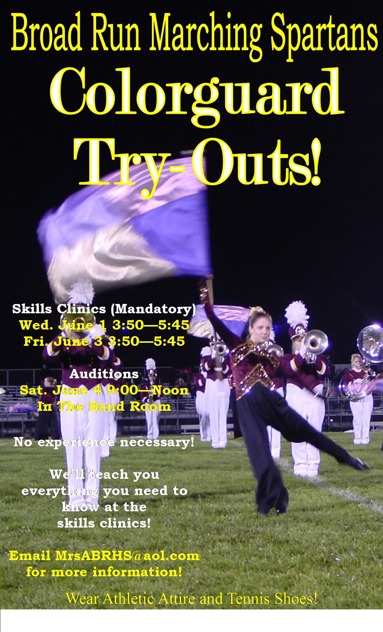 Articles about color guard - Purple Flag Poster